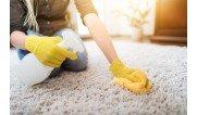 Для чищення  коврів